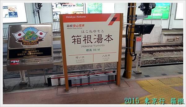 20150322東京DSC07874-007.JPG