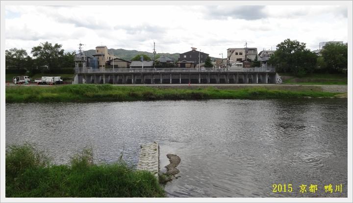 京都鴨川014.JPG
