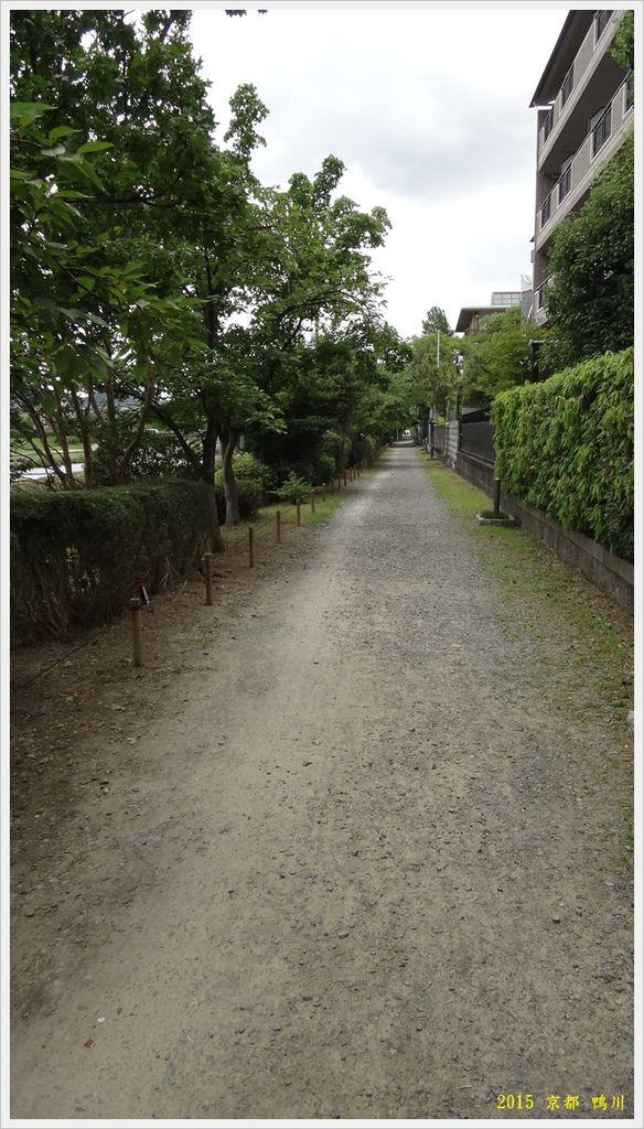 京都鴨川029.JPG