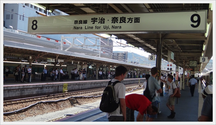 20150714奈良公園001.JPG