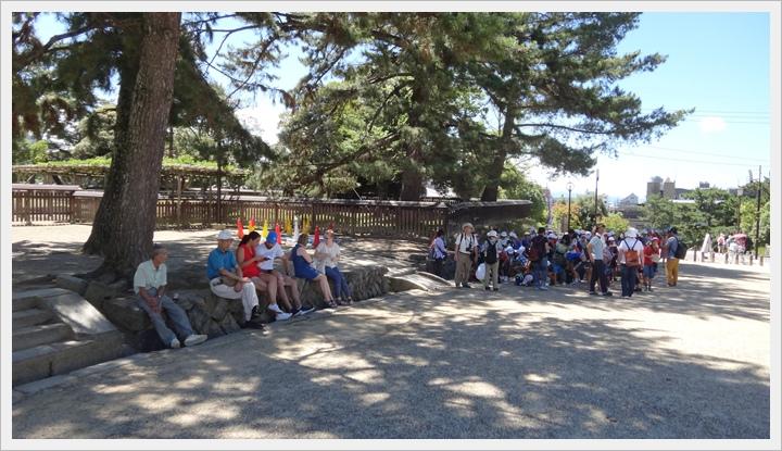 20150714奈良公園026.JPG