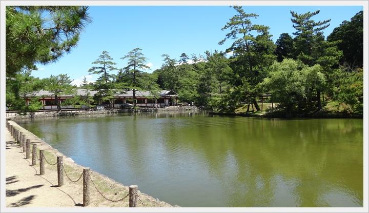 20150714奈良公園061.JPG