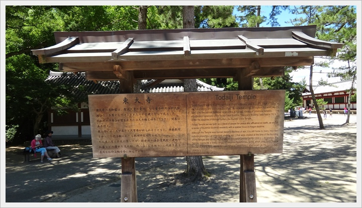 20150714奈良公園064.JPG