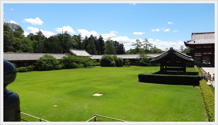 20150714奈良公園077.JPG