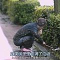 31_凪的新生活01 (31).JPG