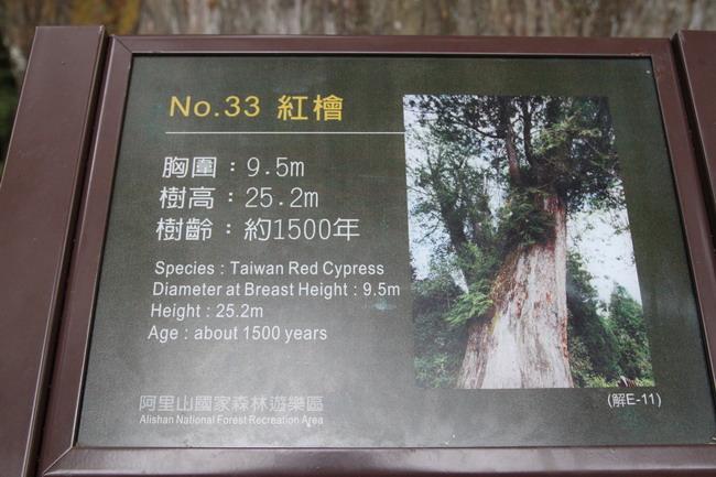 1020214B-013.JPG