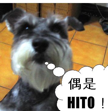 HITO.jpg