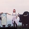 陽明山步道09