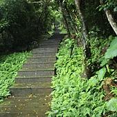 連綿的階梯