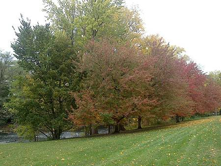 2013-10-21 15.10.22.jpg