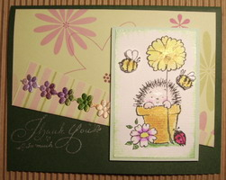 大寶媽的刺蝟卡.jpg