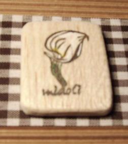midoli海芋.jpg