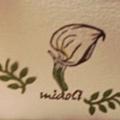 midoli海芋一.jpg