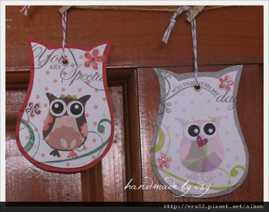 owl大合照6