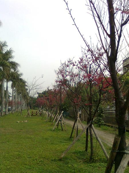 綠園道9.JPG