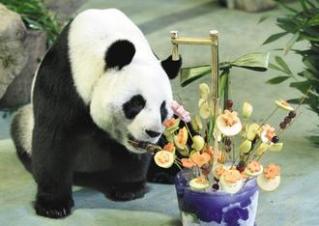 取材自網路的熊貓水果棒生日蛋糕