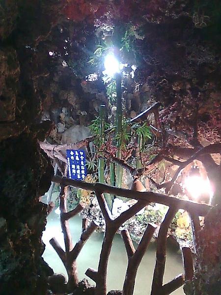 澎湖大義宮蓮花珊瑚洞