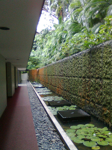 新加坡Siloso Beach Resort的庭院