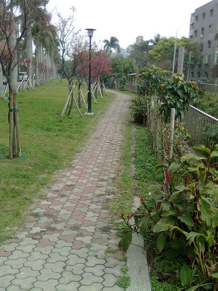 綠園道7.JPG