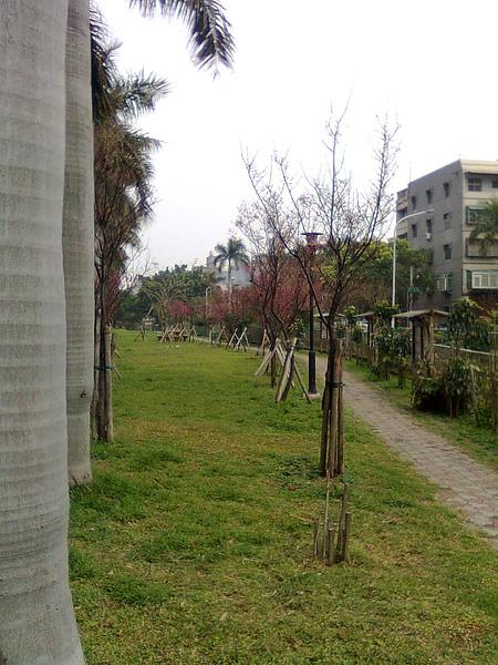 綠園道6.JPG