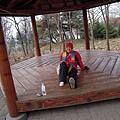 韓國人最愛的木板床
