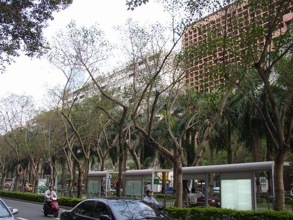 344.仁愛延吉街口