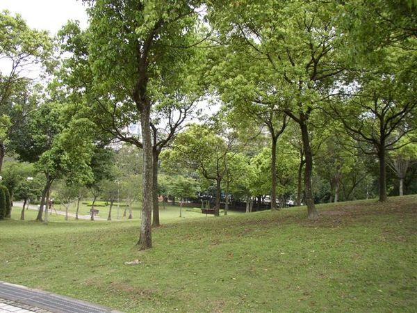 152.大安森林公園靠和平東路側