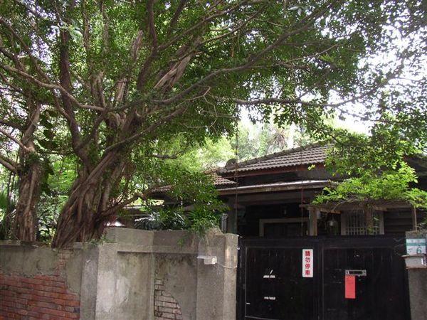 113.青田街(二)