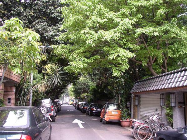113.青田街(三)