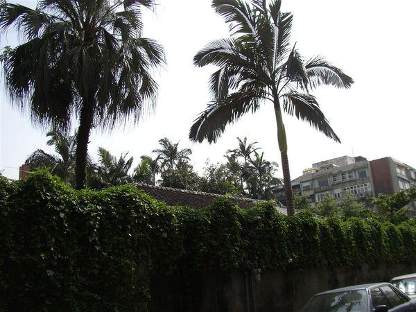 113.泰順公園旁的日式房舍