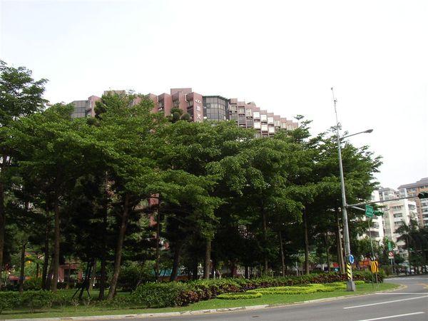 351.三民路圓環(西北往東南)