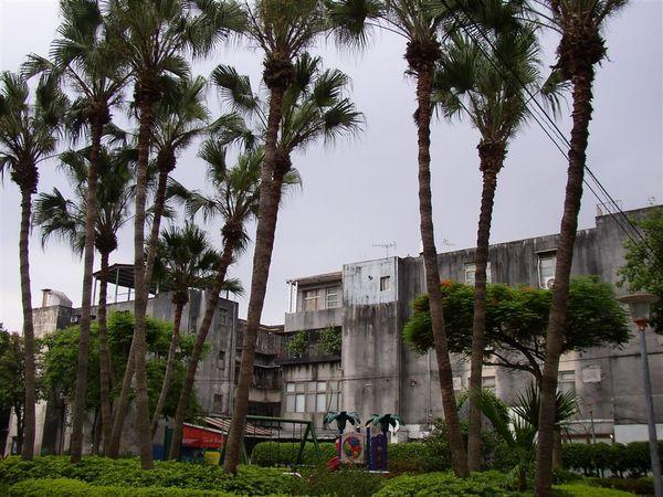 351.富錦一號公園與聯合二村