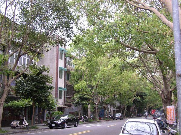 351.富錦街東段