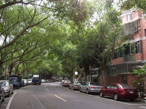 351.富錦街西段