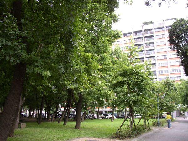 351.敦北公園