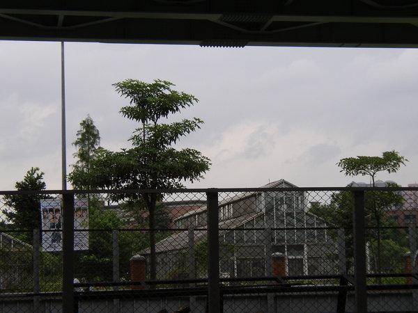 114.台大綠房子與橋下首都拒馬的儲藏所