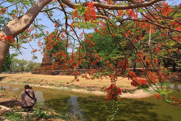 泰國潑水節-1