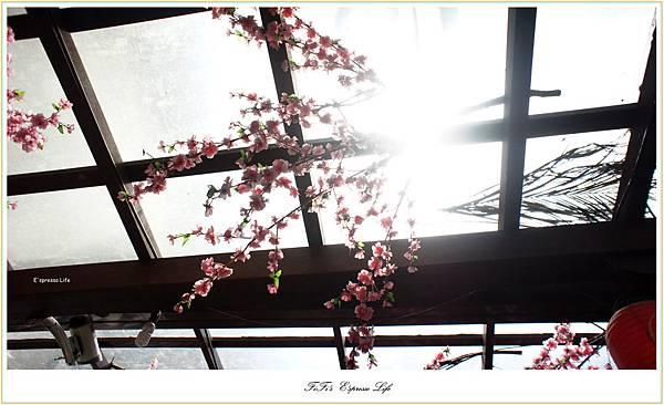 DSC05903_副本.jpg