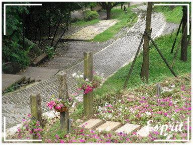 發現花園 012
