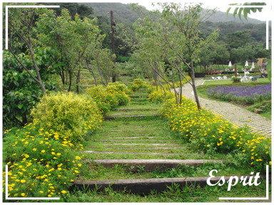 發現花園 015