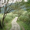 踏青步道 8