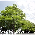 宜蘭之旅 060 - 綠色博覽
