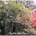 關東之旅 - 0065 - 日光東照宮