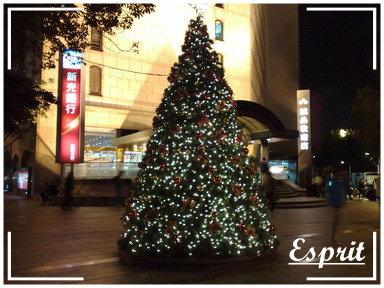 聖誕祝賀 001