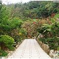 花岩山林 038.jpg