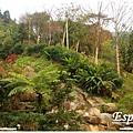 花岩山林 039.jpg