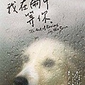 Book - 我在雨中等你 175x250