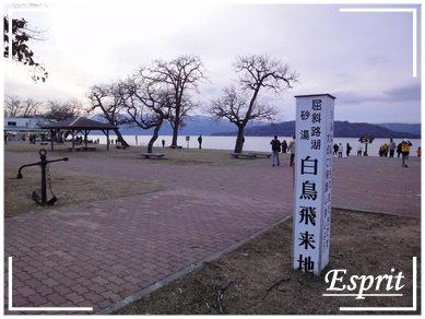 北海道行 0059.JPG