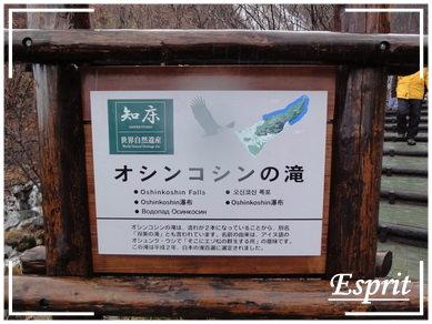 北海道行 0199.JPG