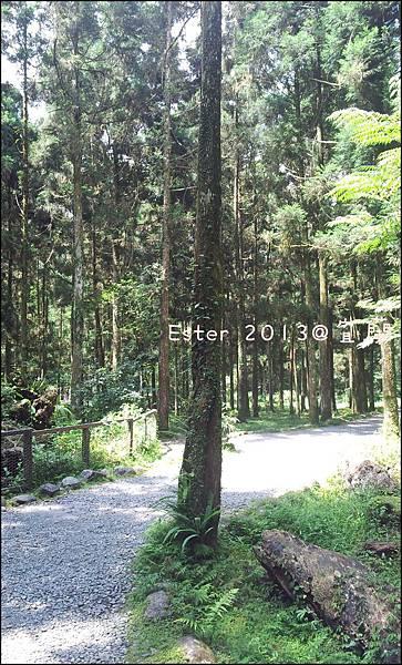 C360_2013-06-30-10-14-43-085_org